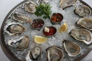 catch35oysters1